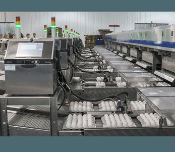 Hitachi Rx series melhora o tempo de atividade e reduz os custos de marcação de produto em 43%